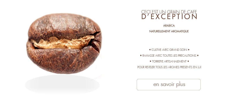 GRAIN DE CAFE D'EXCEPTION